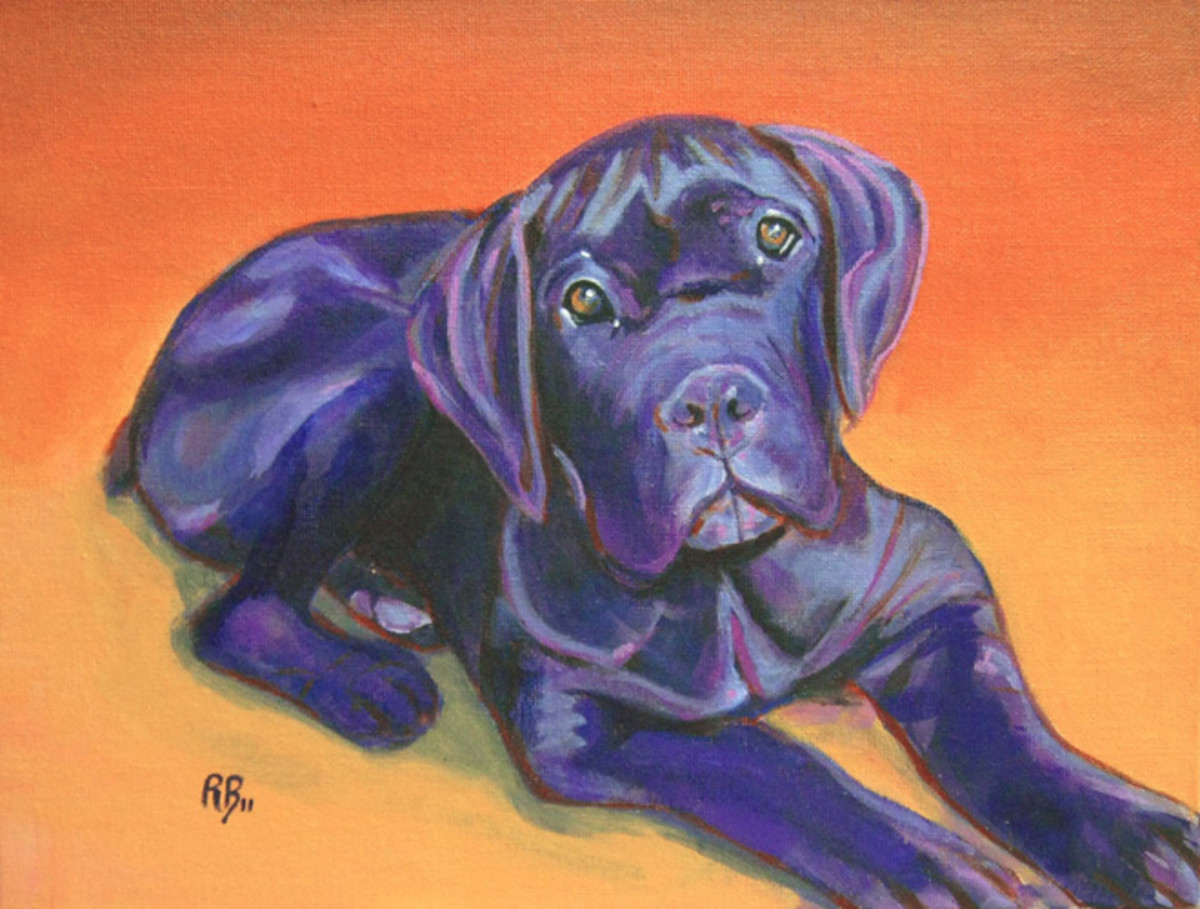 "Complementary color scheme example, blue and orange.  ""Ettore, Cane Corso, the Italian Mastiff"", 9""x12"", Acrylic on Canvas"