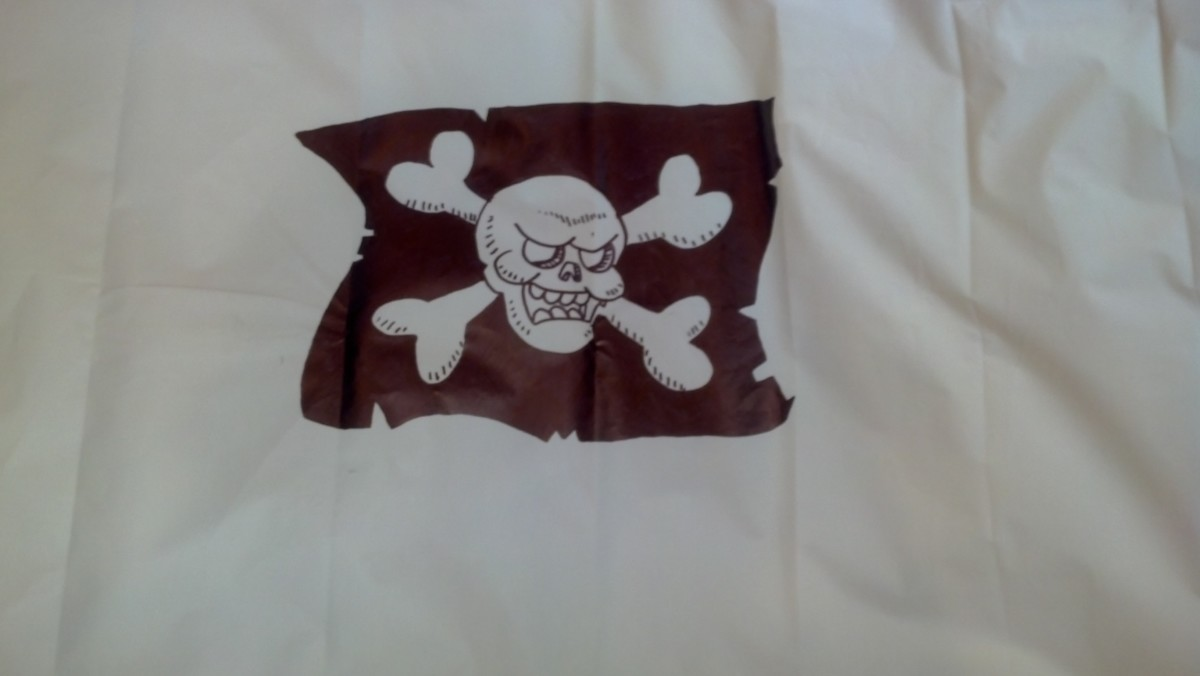 The finished pirate symbol on our sail.