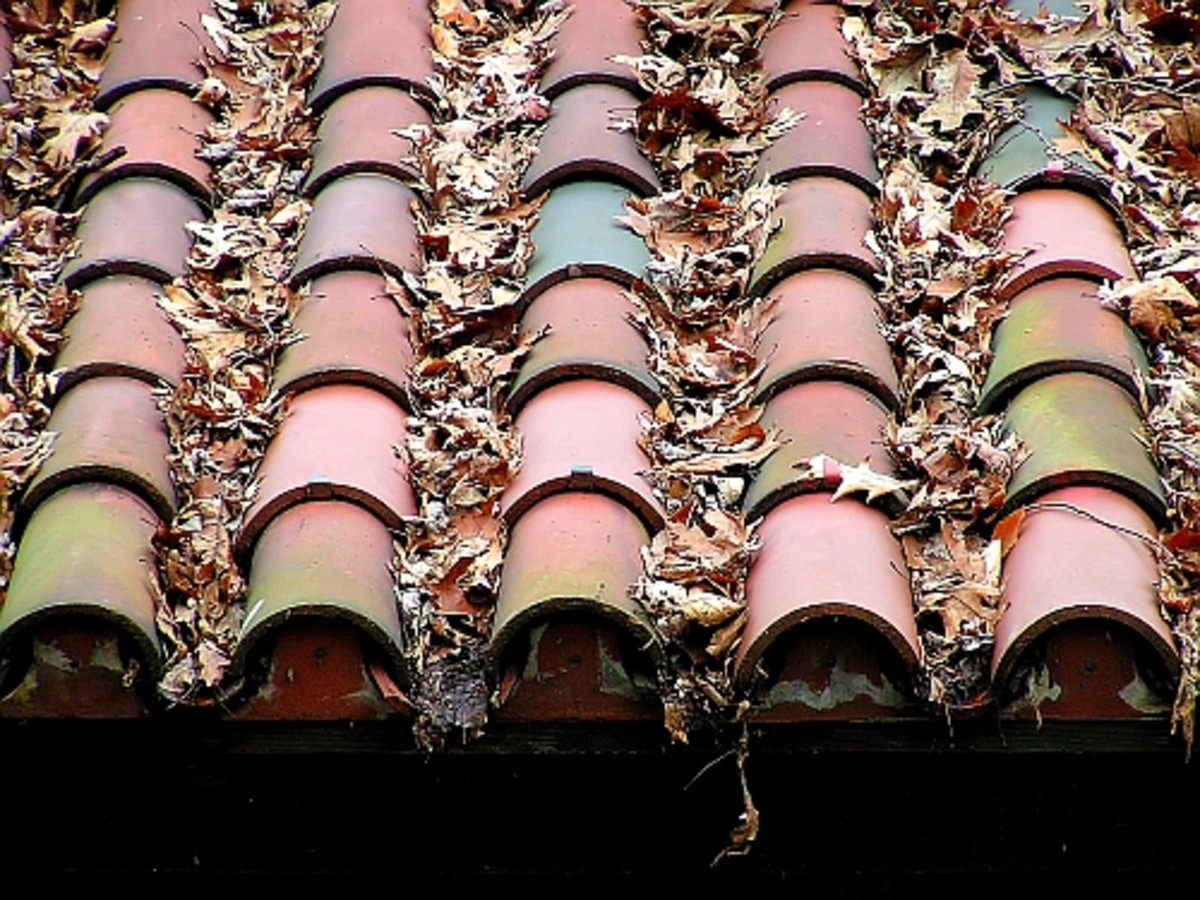 Old roof tiles (Morguefile free license).