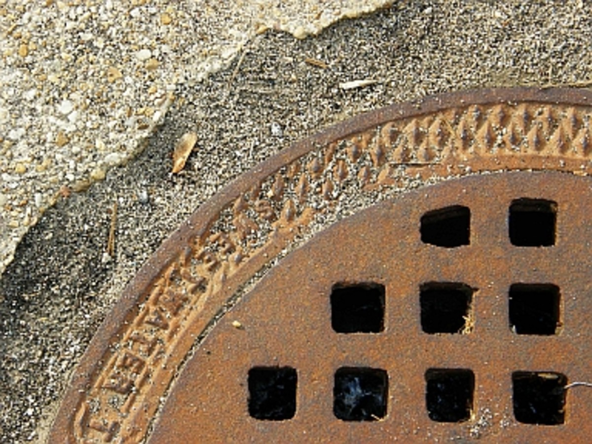 Drain cover with a built in tangle right around the edge (Morguefile free license).