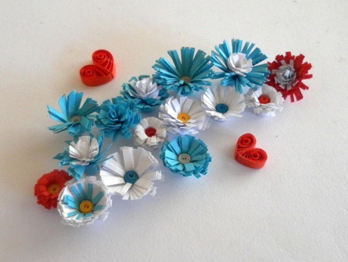 Lovely fringed flowers