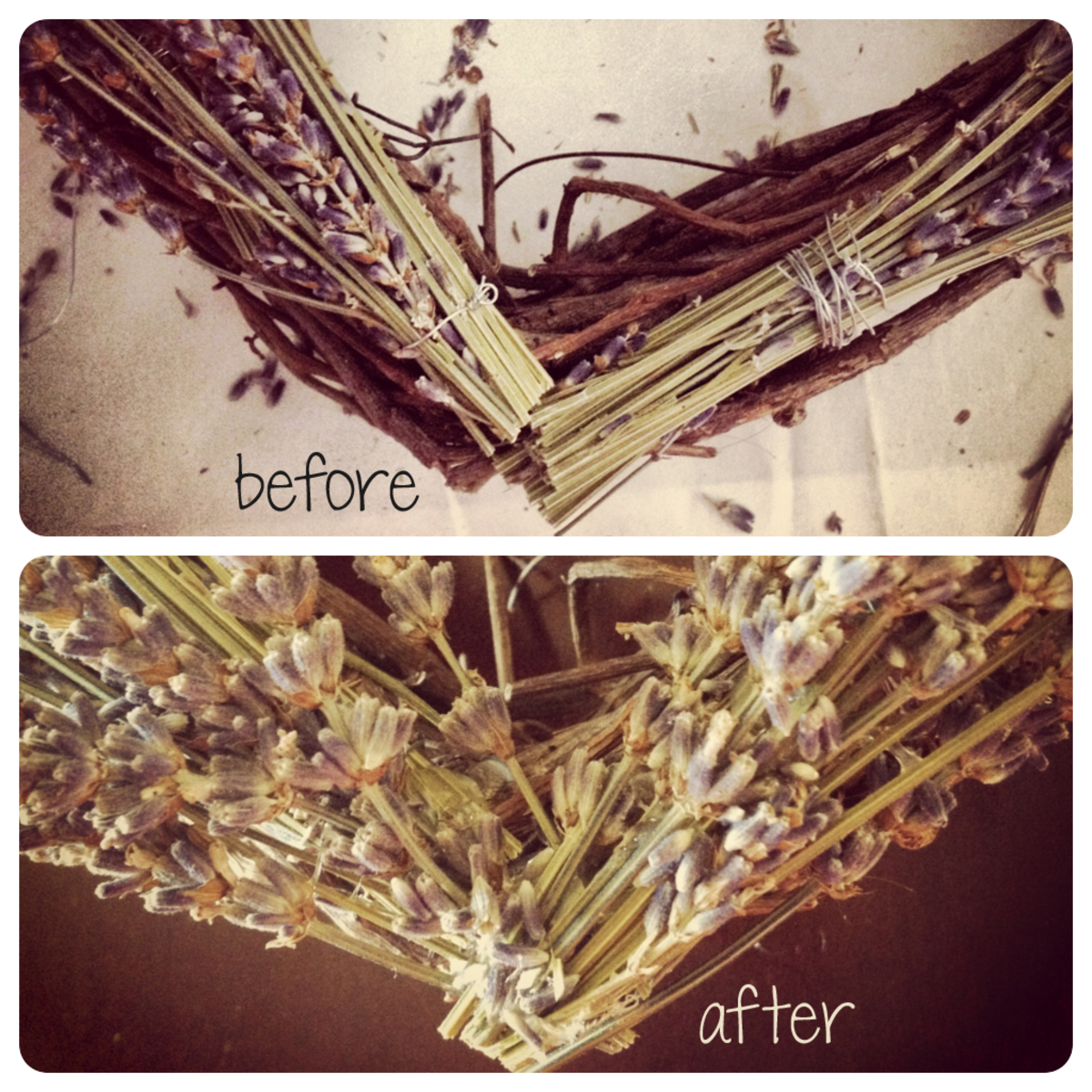 Use loose sprigs of lavender and hot glue to hide unsightly wires  or fix any spots.