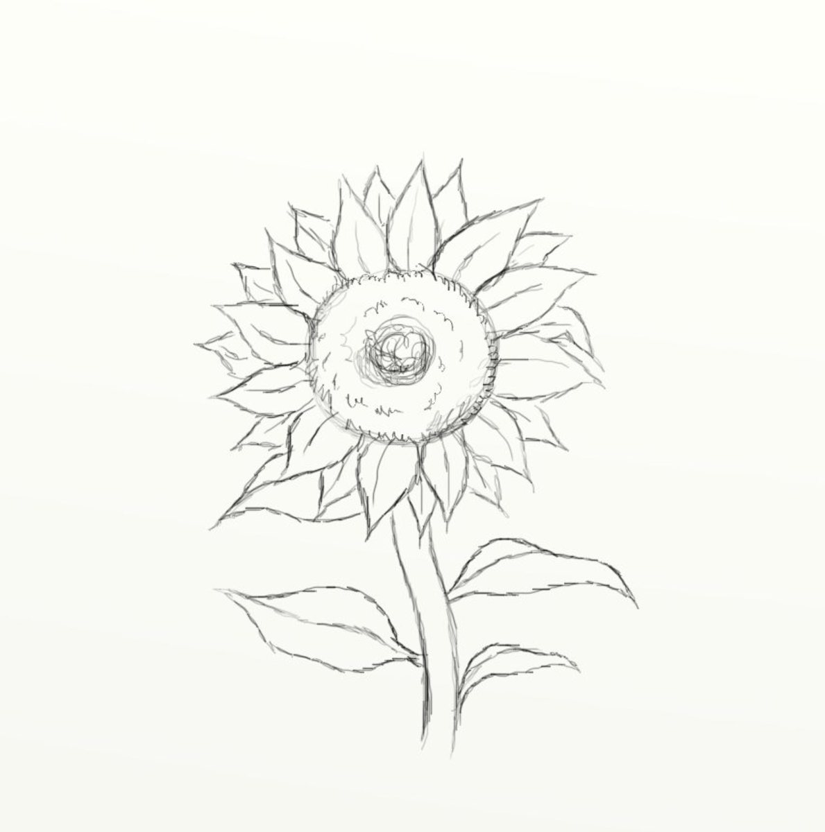 How To Draw A Sunflower Feltmagnet