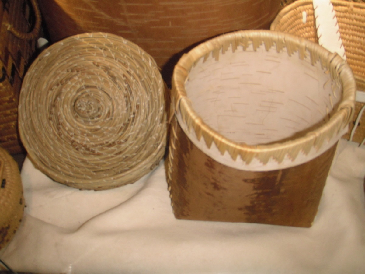Interior Salish pine needle basket, left, and birch bark basket, right.  Birch bark for baskets is harvested in the spring once the sap is up in the tree.  The bark-harvesting season lasts approximately ten days, so the tree has time to heal.