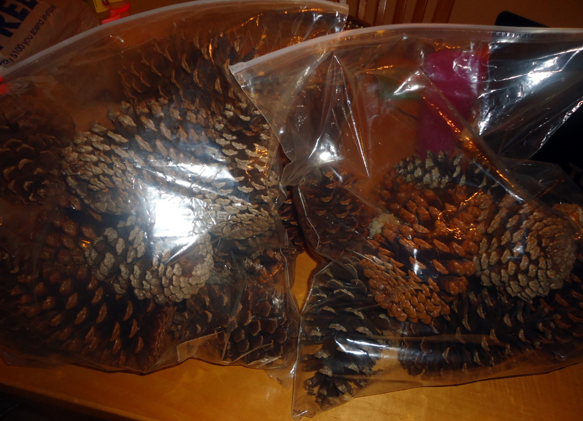 pine cones in baggies with scented oils