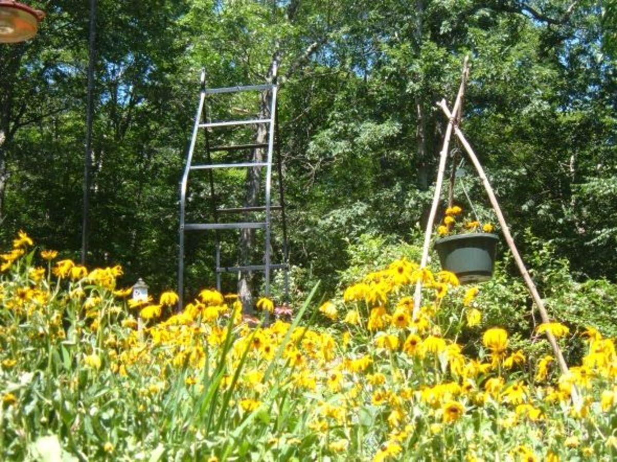 Mason Bee House Plans ~ Pollinator's Garden