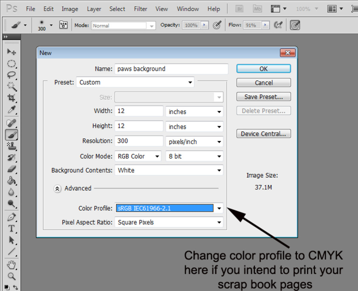 "1. Open a new document under the ""File"" tab of the main menu.  Set it at 12""x12"" and 300 dpi"