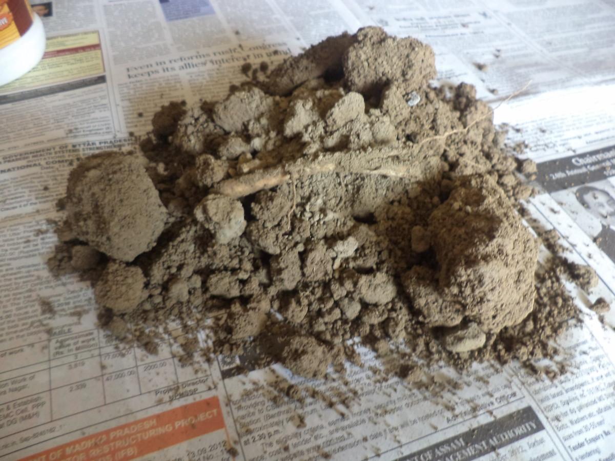 Ordinary Garden Soil: The Basic Raw Material-2