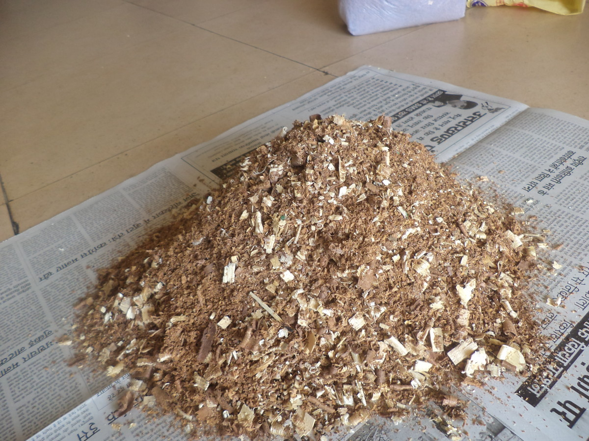 Sawdust: The Basic Raw Material-1
