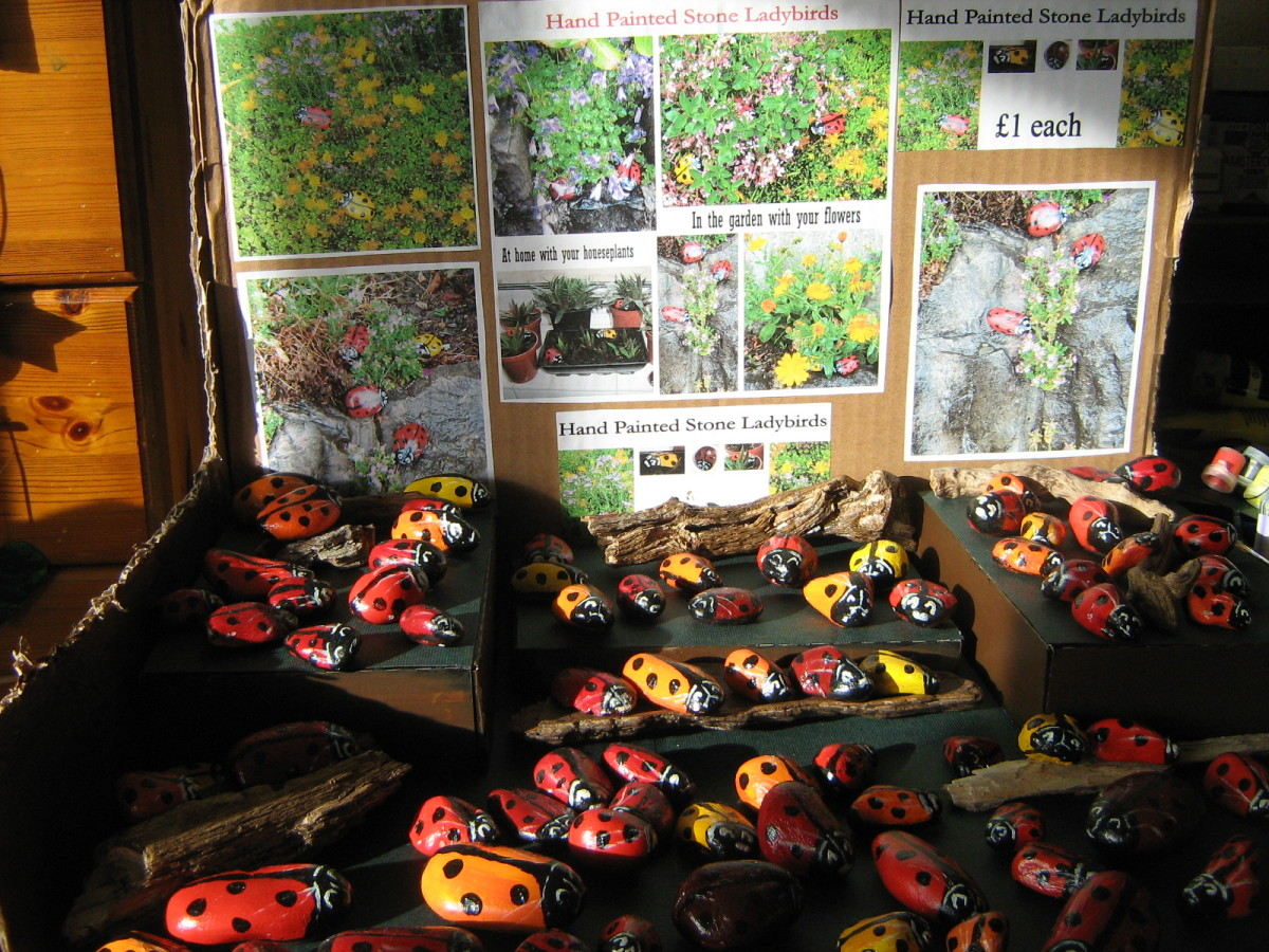 Ladybugs for sale at craft shows