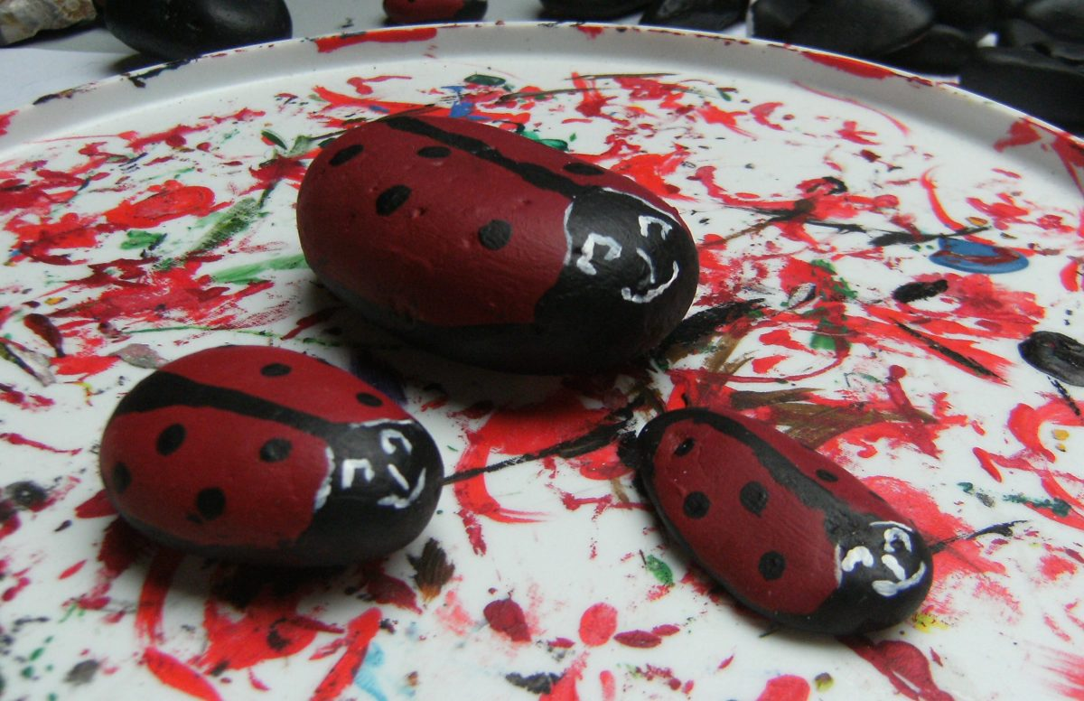 Ladybugs on Rocks