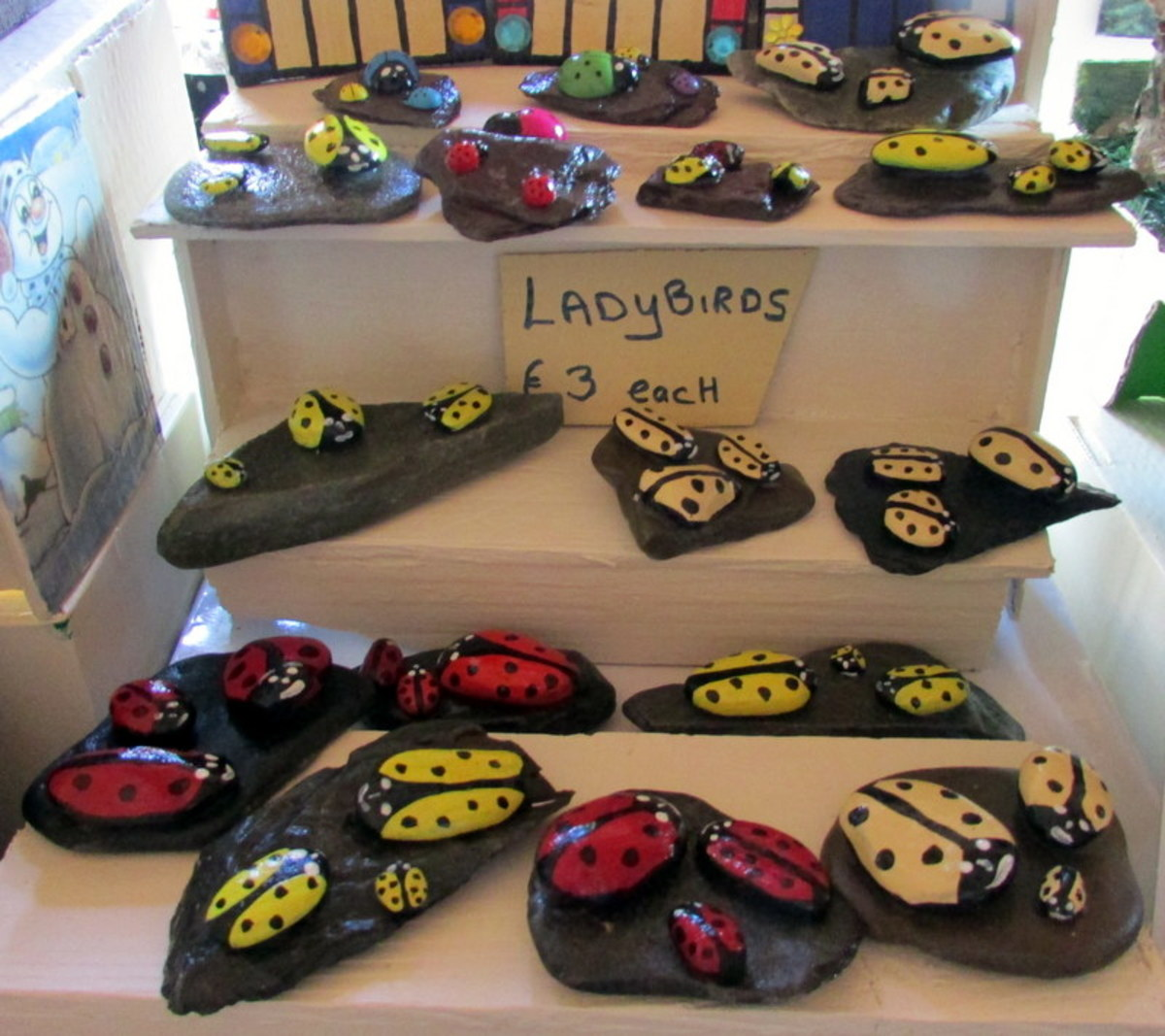 Ladybirds On Display