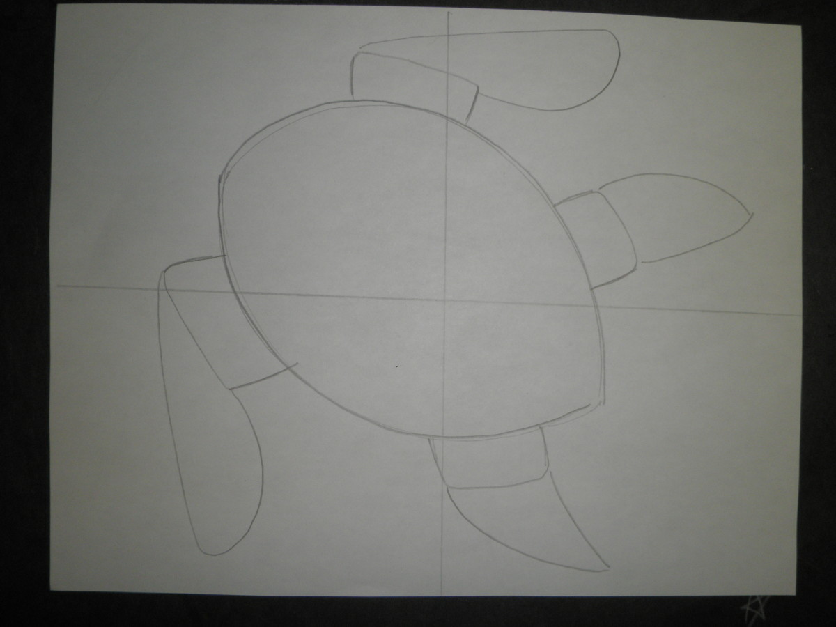 Step 3: How to draw a sea turtle
