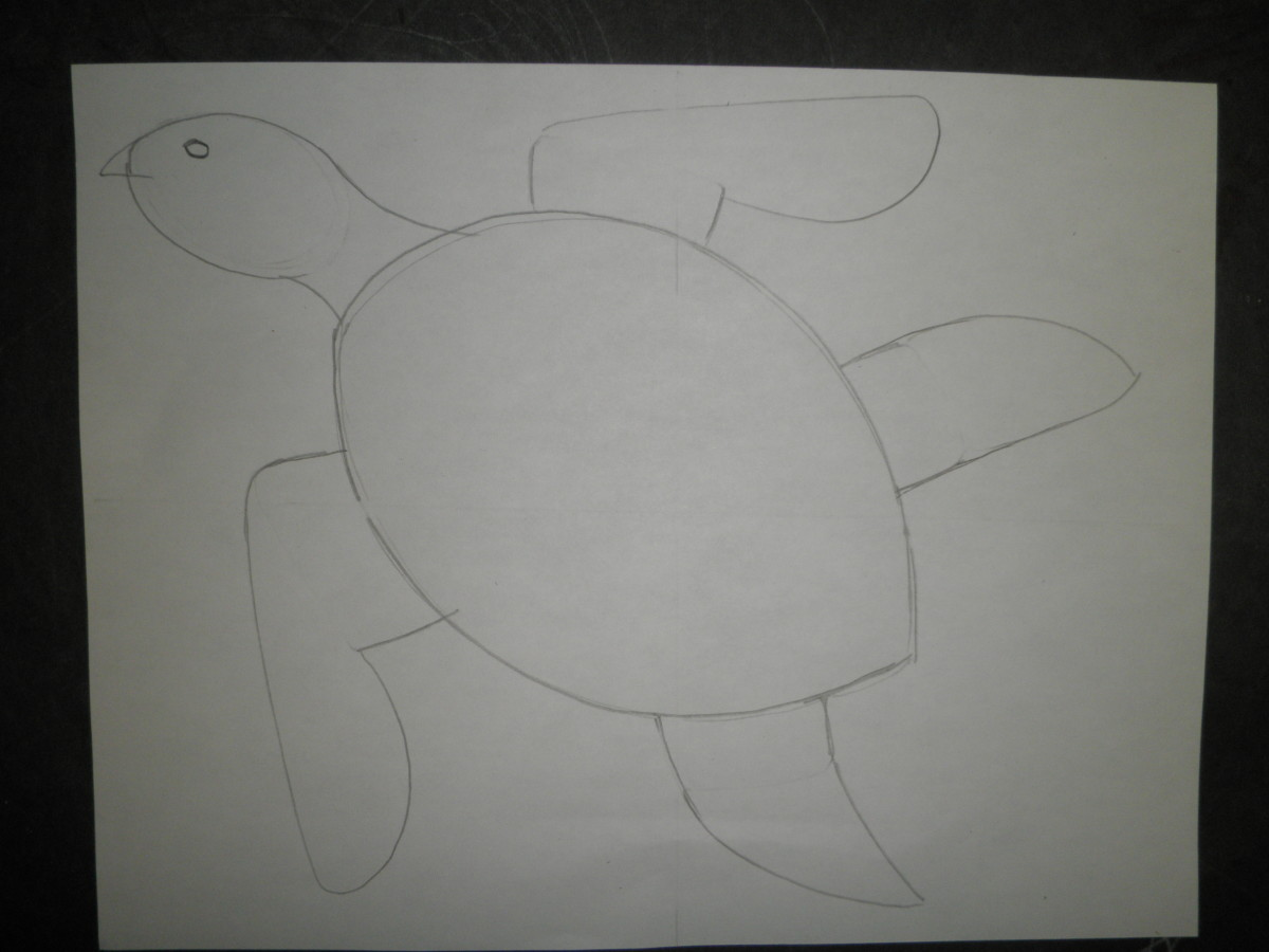 Step 5: How to draw a sea turtle