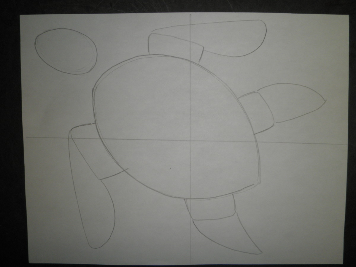 Step 4: How to draw a sea turtle