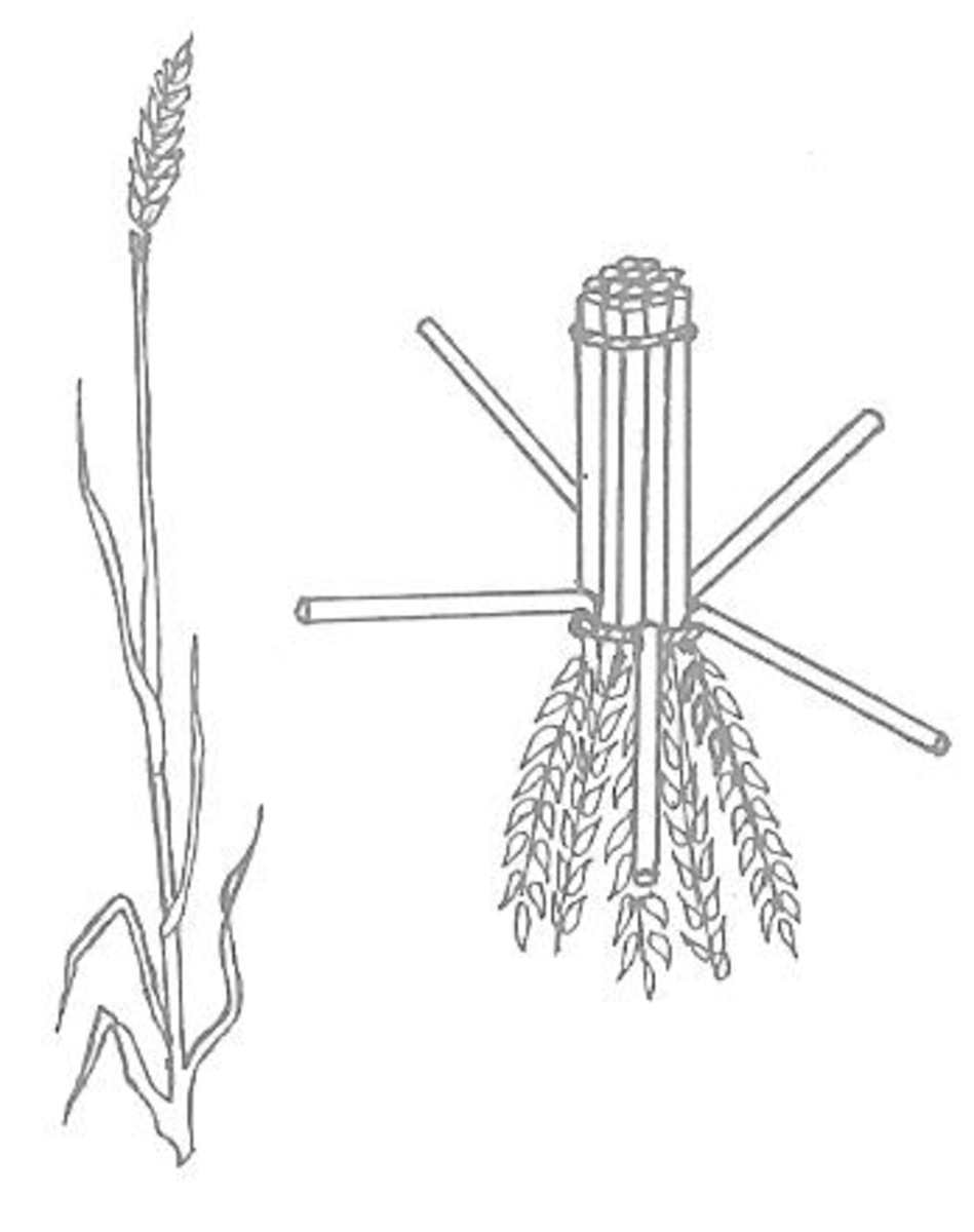 Figure 1 (left) & Figure 2 (right)