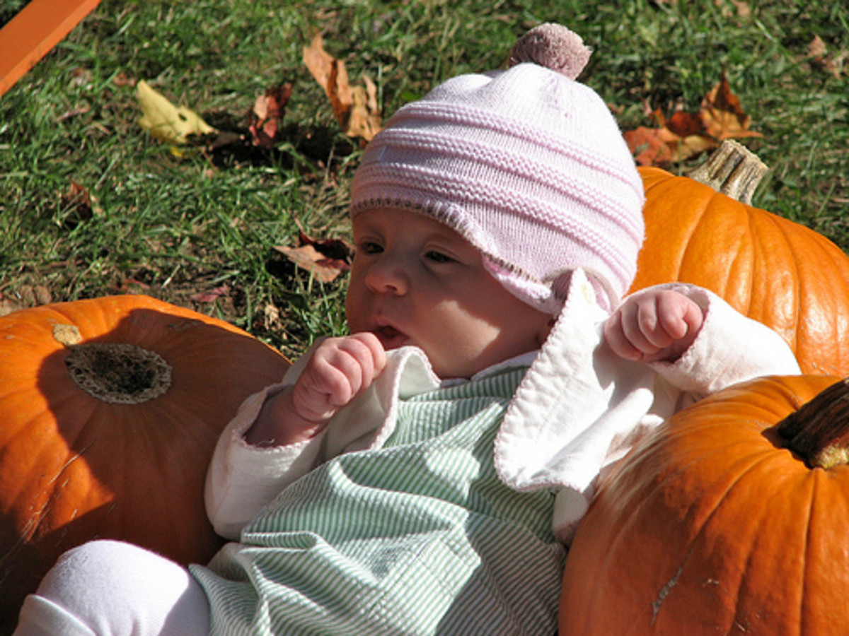 A baby sitting among the pumpkins is a classic choice for an autumn photo shoot.