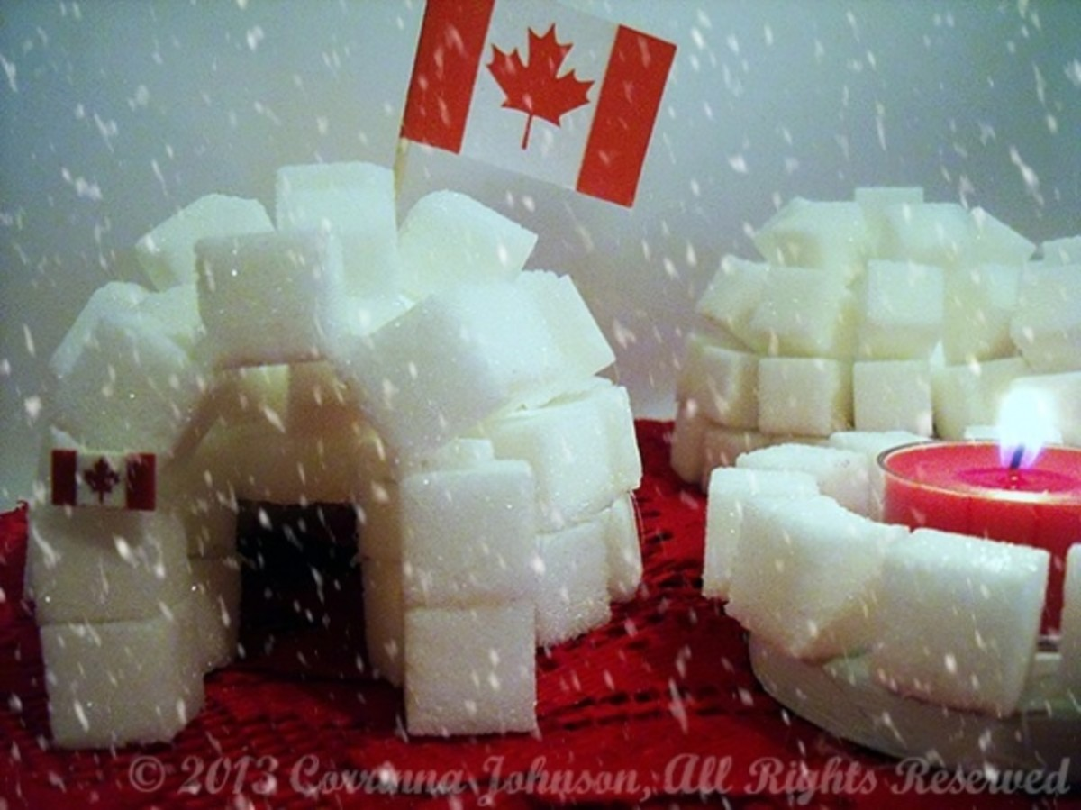 How To Build A Sugar Cube Igloo