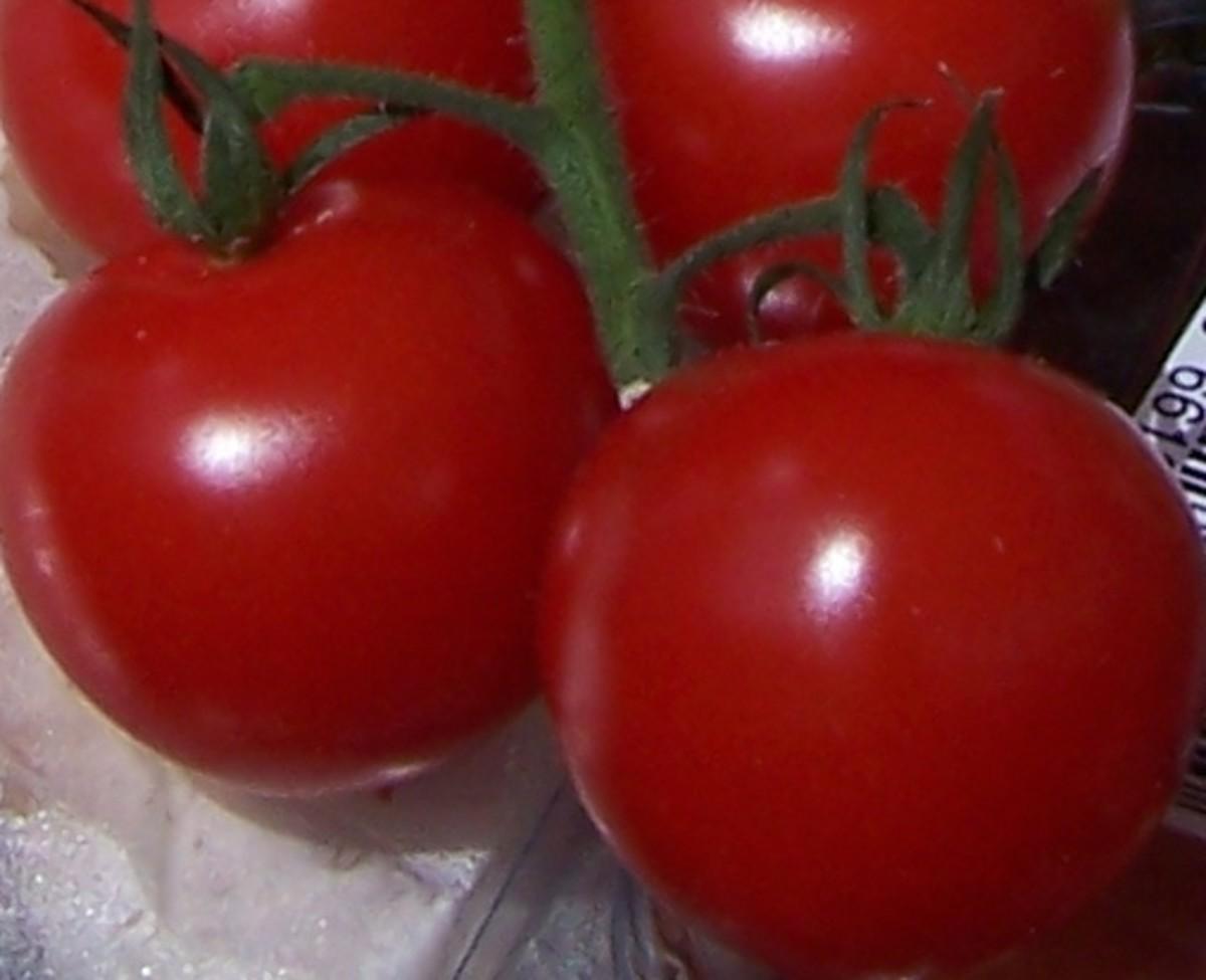 Economy Gastronomy Recipes: Basic Tomato Sauce