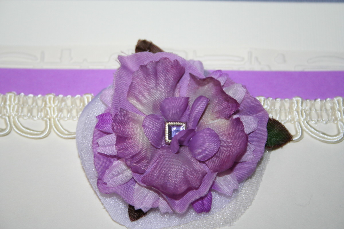 Flower appears plum purple in this photo before adjustments