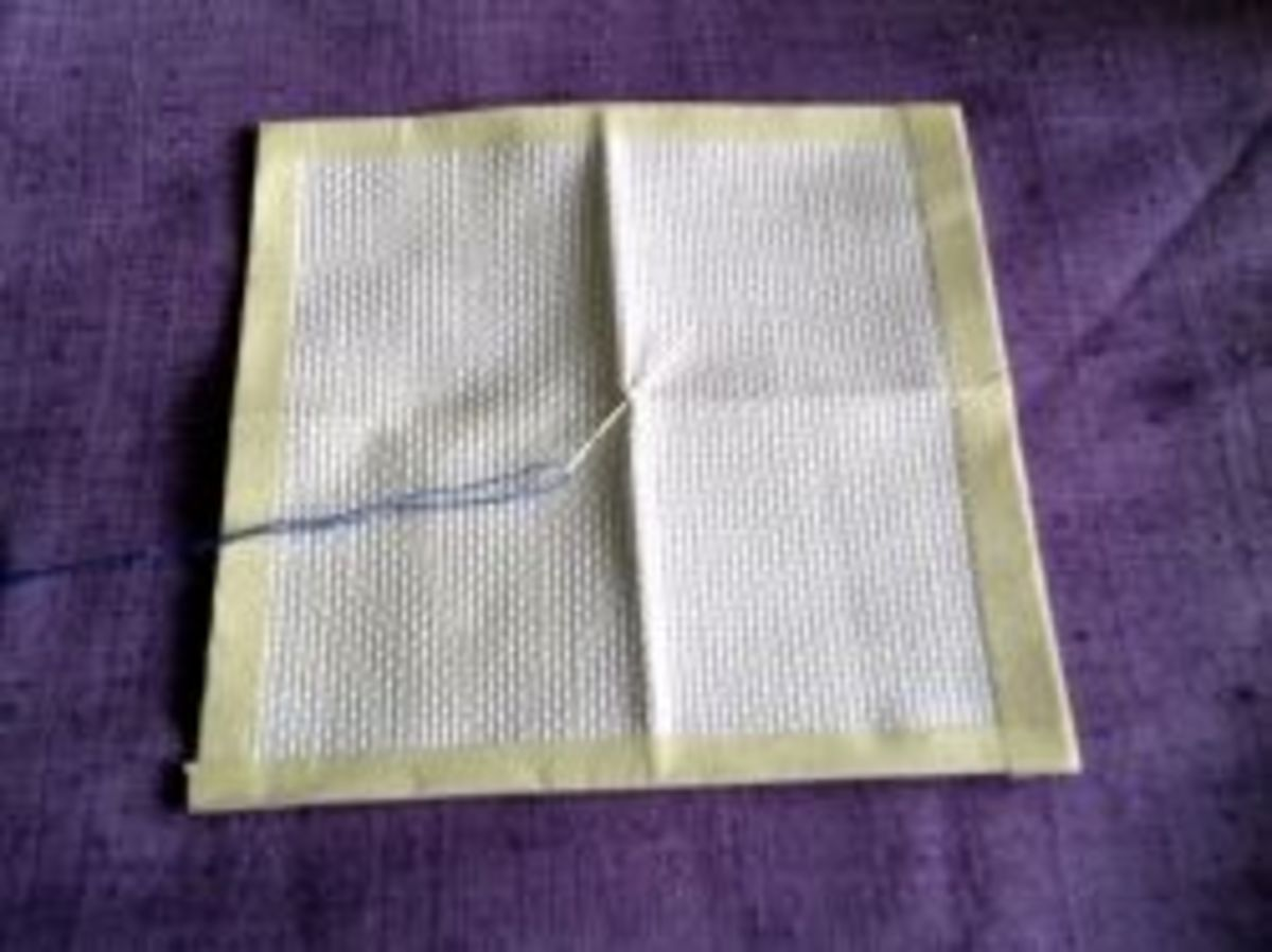 Aida cloth with center square marked.