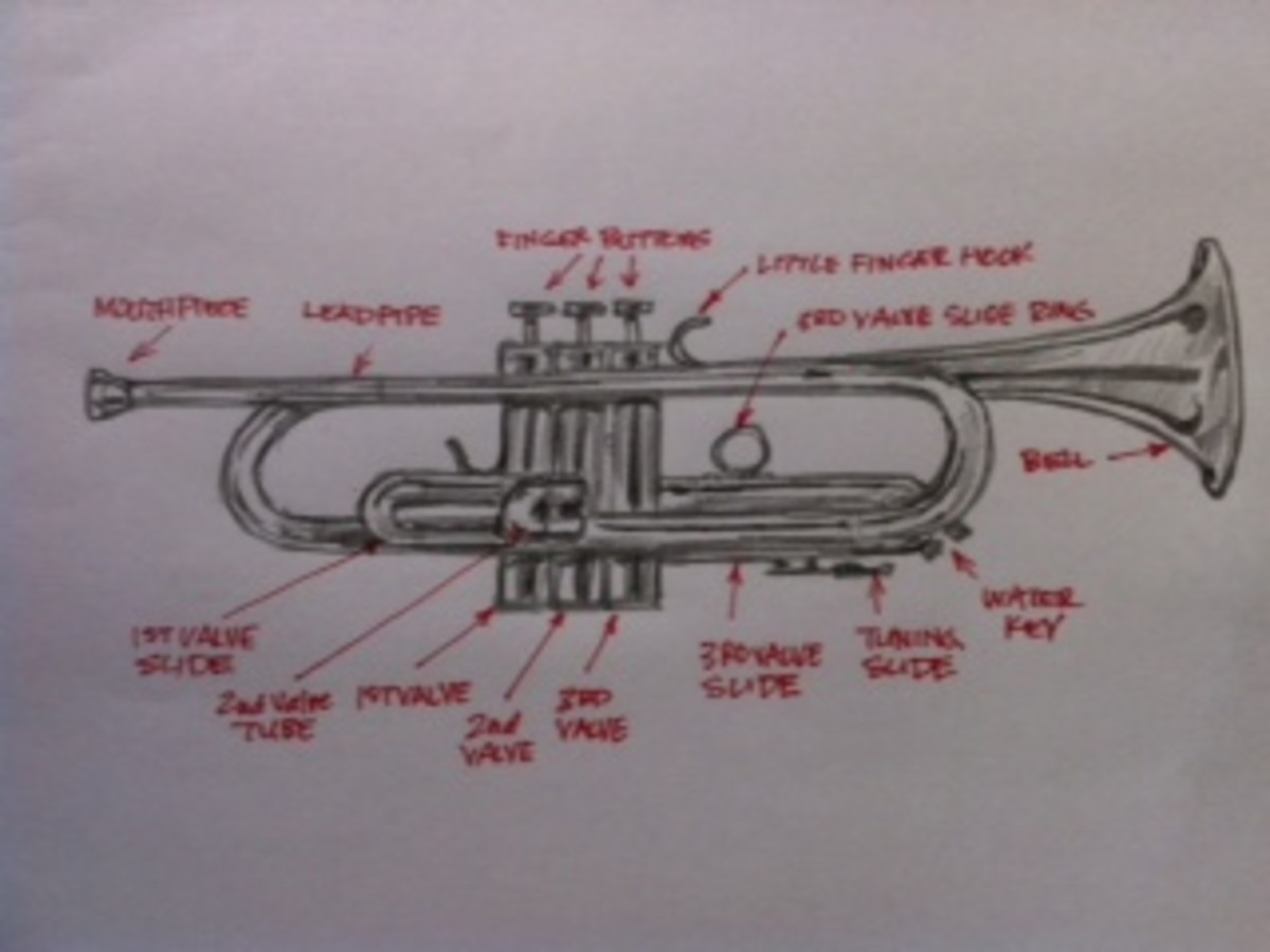 The various parts of the trumpet