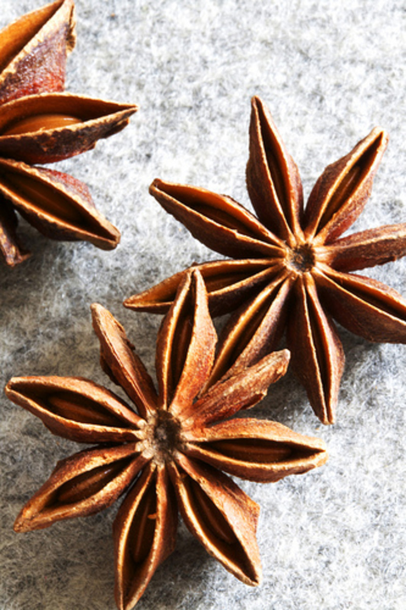 Star anise is one of several spices that can be used in jewellery making.