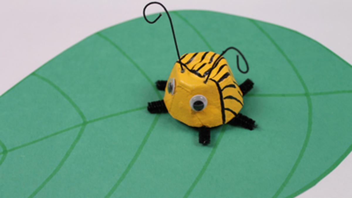 Potato beetle craft