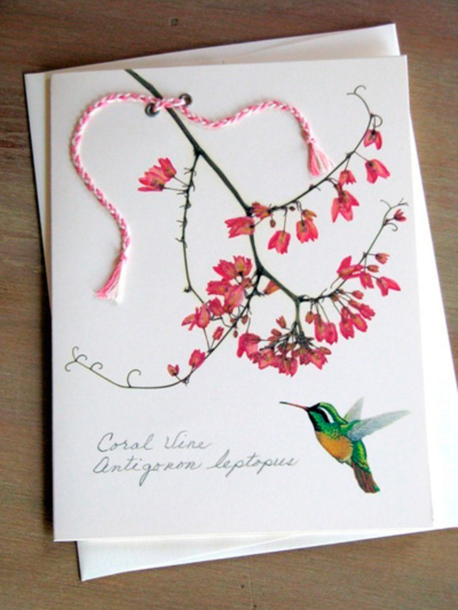 A pressed flower card with a watercolour kingfisher and calligraphic greeting.