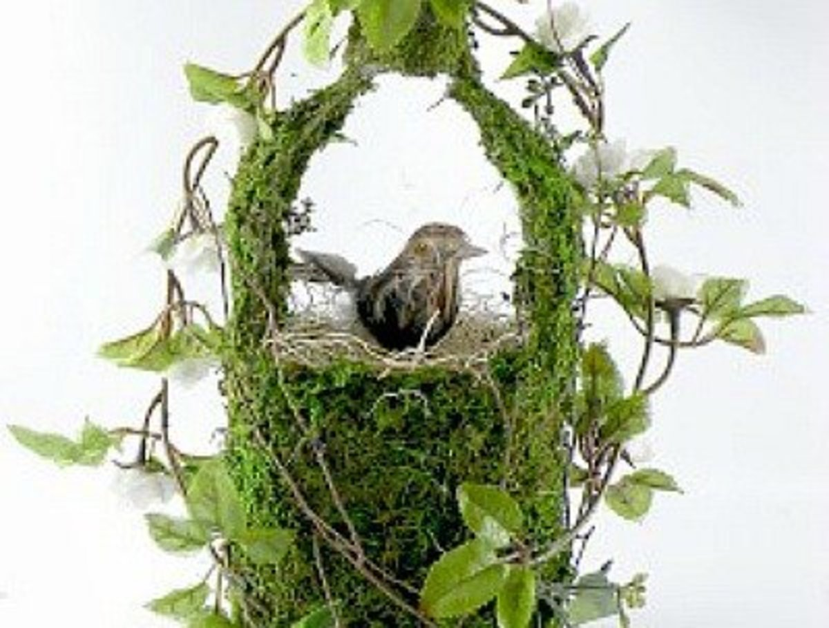 ways-to-use-moss-in-crafts