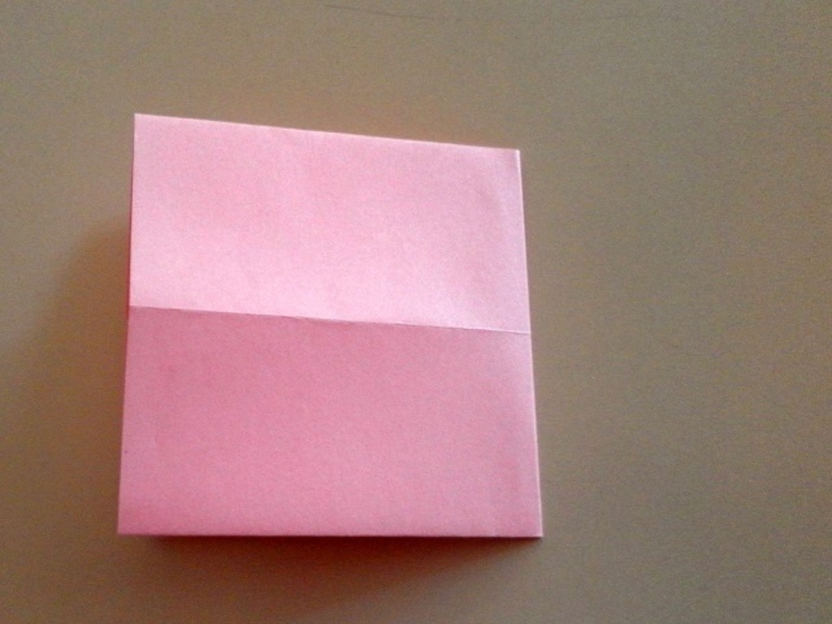 Fold the paper in half from right to left with the right side overlapping the left.