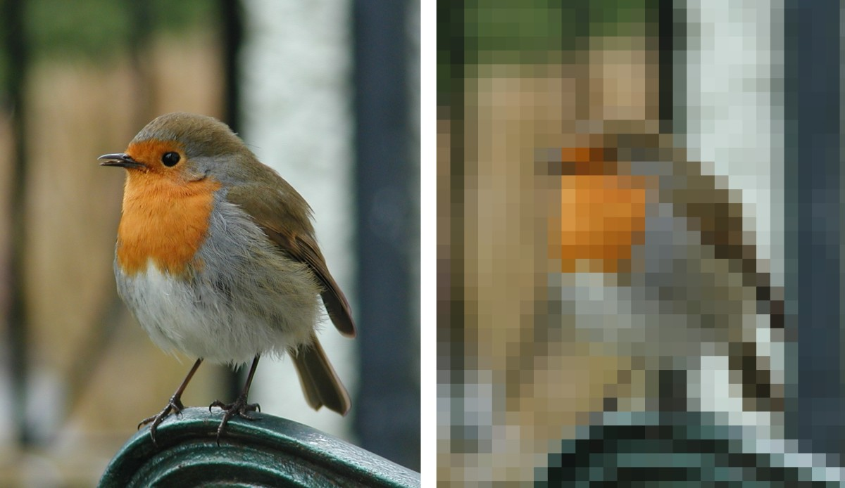 An exaggerated idea of how low resolution images capture less detail of a subject