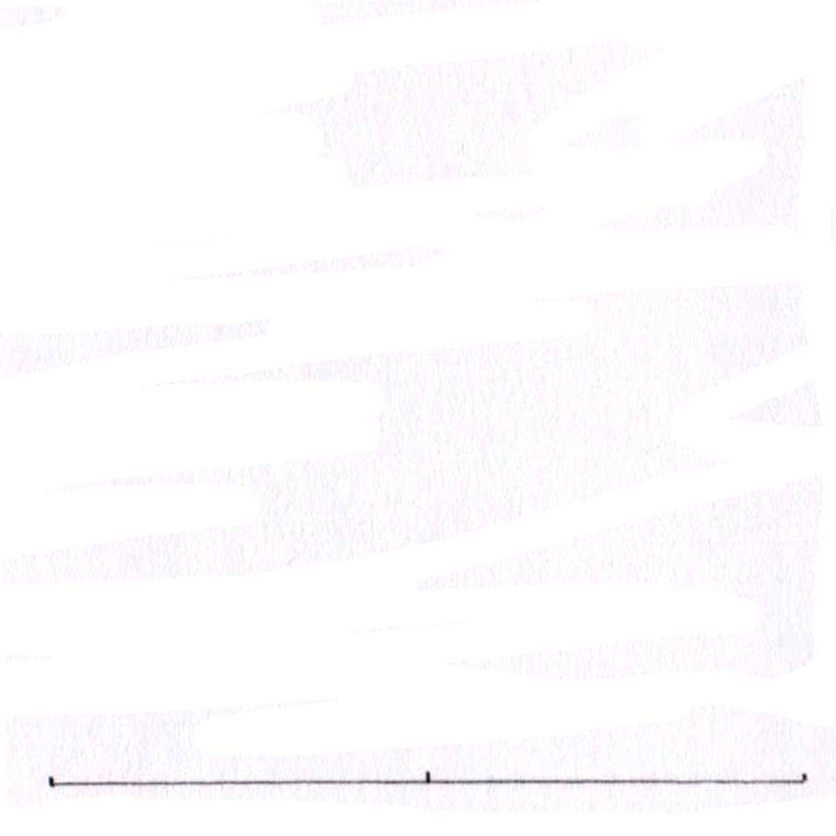 Triquetra tutorial step one