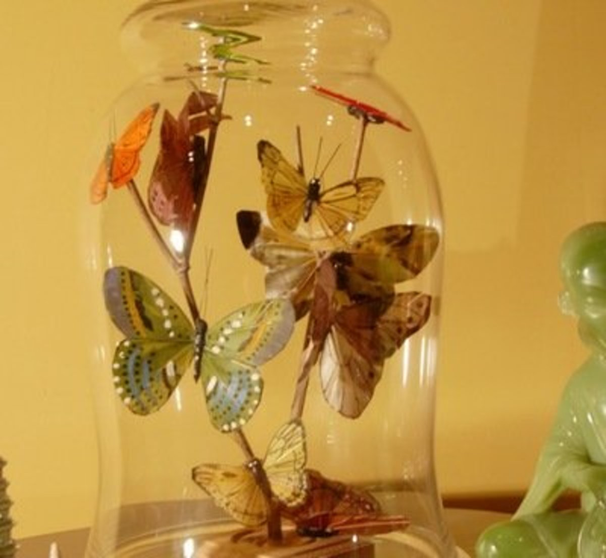 Butterflies Under Glass This Project