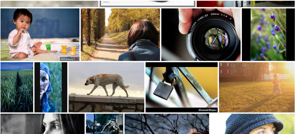 Flickr search for the 50mm 1.8.