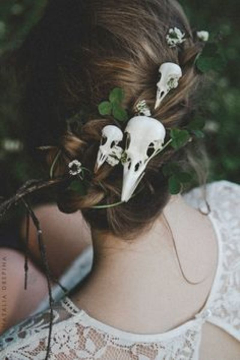 things-to-do-with-animal-skulls
