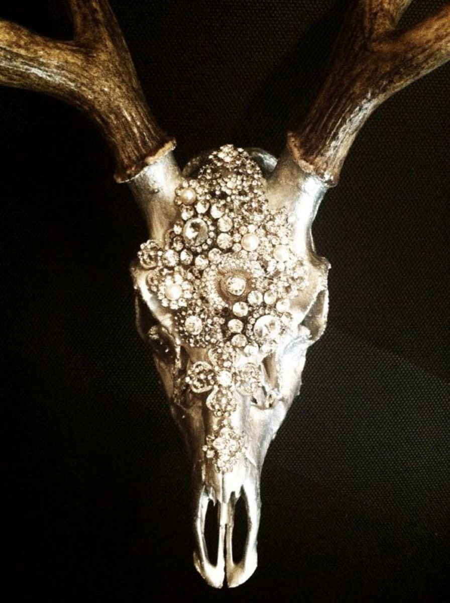 Costume jewelry brilliantly glued onto this skull's surface make it come alive.