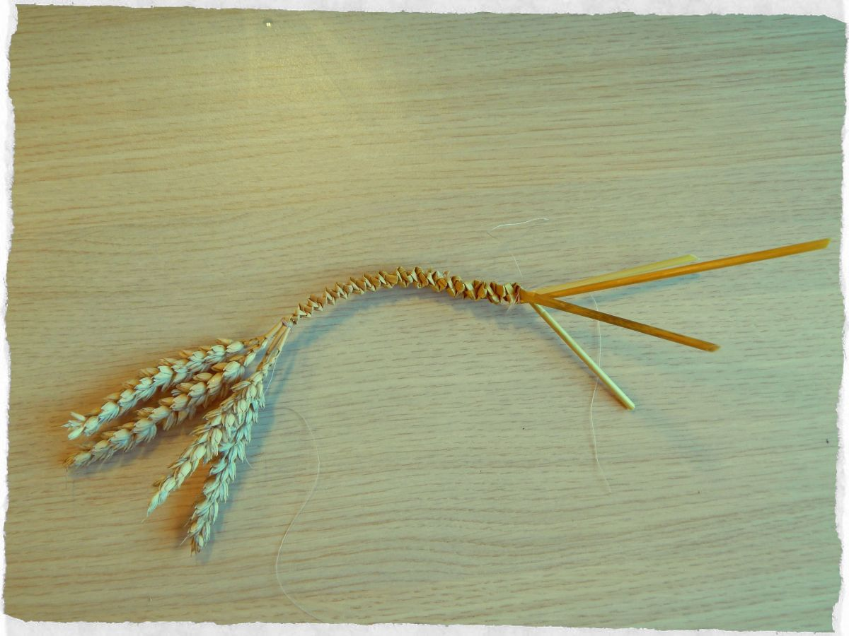 Use cotton to hold your folded stalks in place once you are happy with the length.