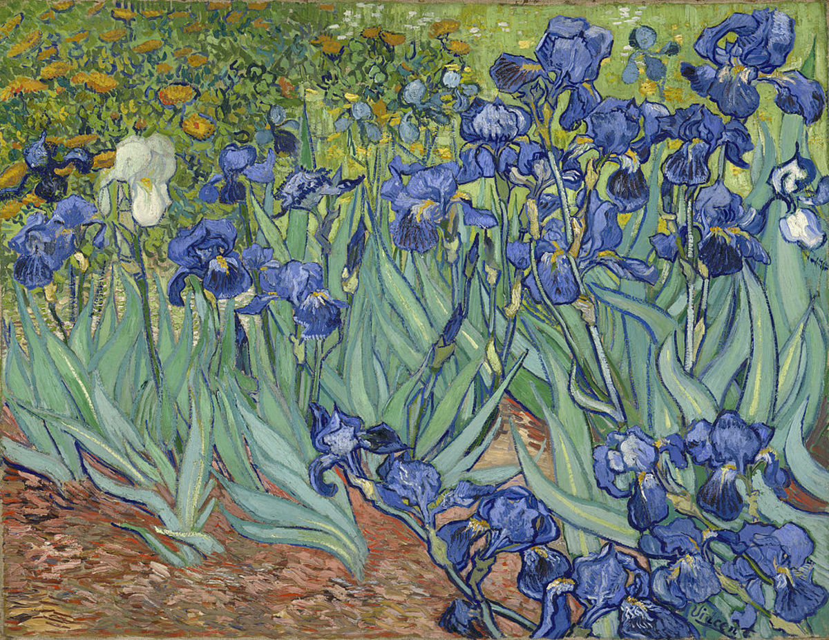 Great painting by Vincent Van Gogh. Thick Paint, less detail in the background, great composition, use of lines, and placement of focal point. Vincent van Gogh - Irises (1889)