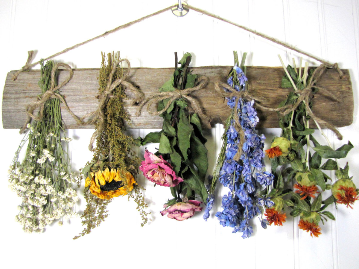 Hanging flowers to dry naturally