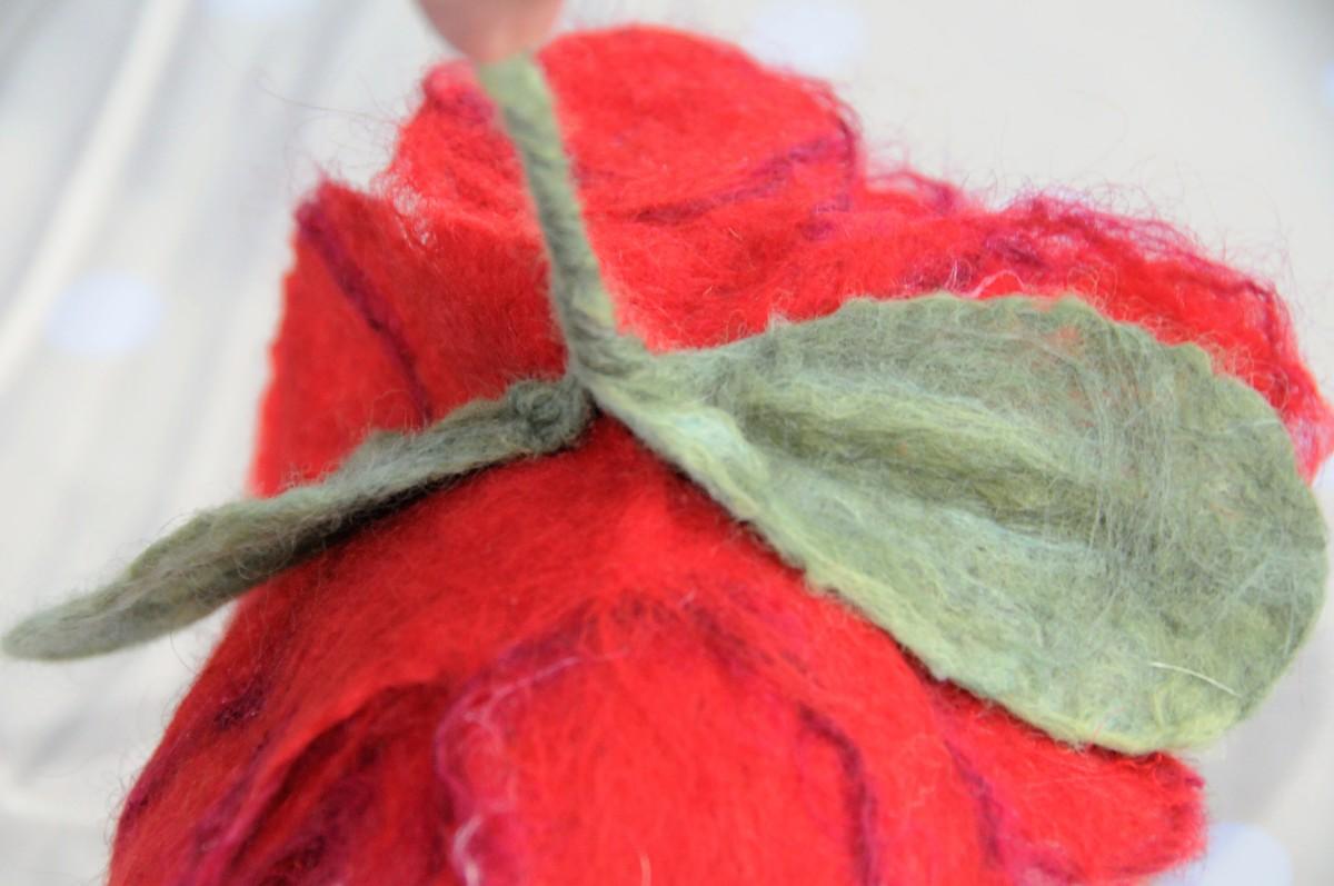 The rear of the Poinsettia.