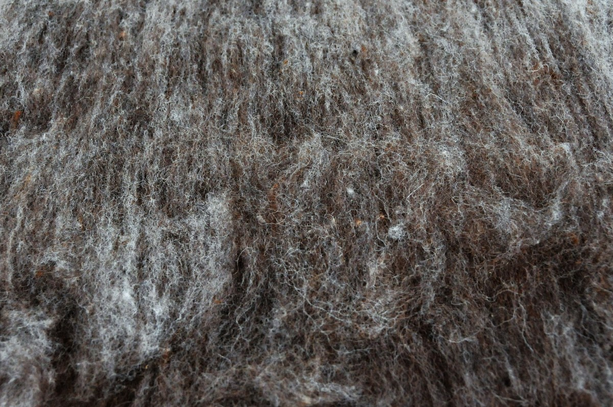 Close-up of a carded wool Batt