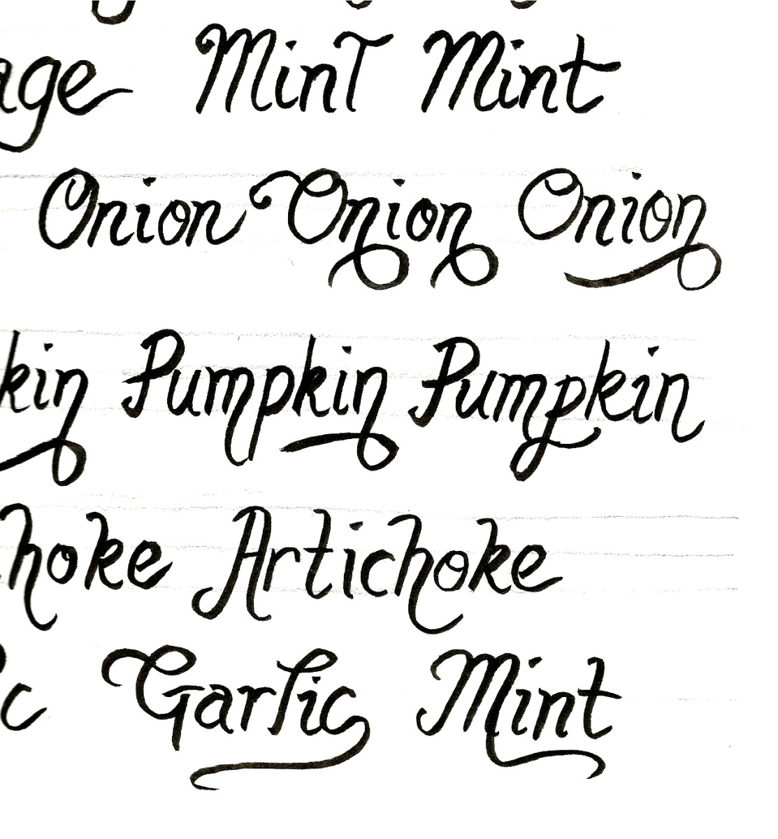 Practice writing the names of your plants on paper first. It will give you confidence, and it will help you gauge how much room you'll need to fit everything onto your rock.