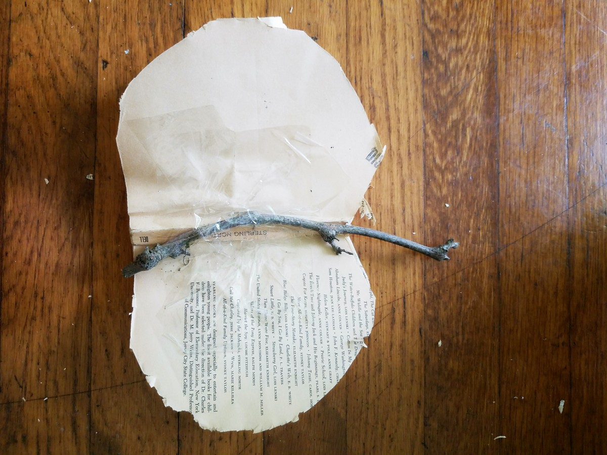 Get a stick from the yard. Tape or glue it to the back of your pumpkin. I used packing tape.