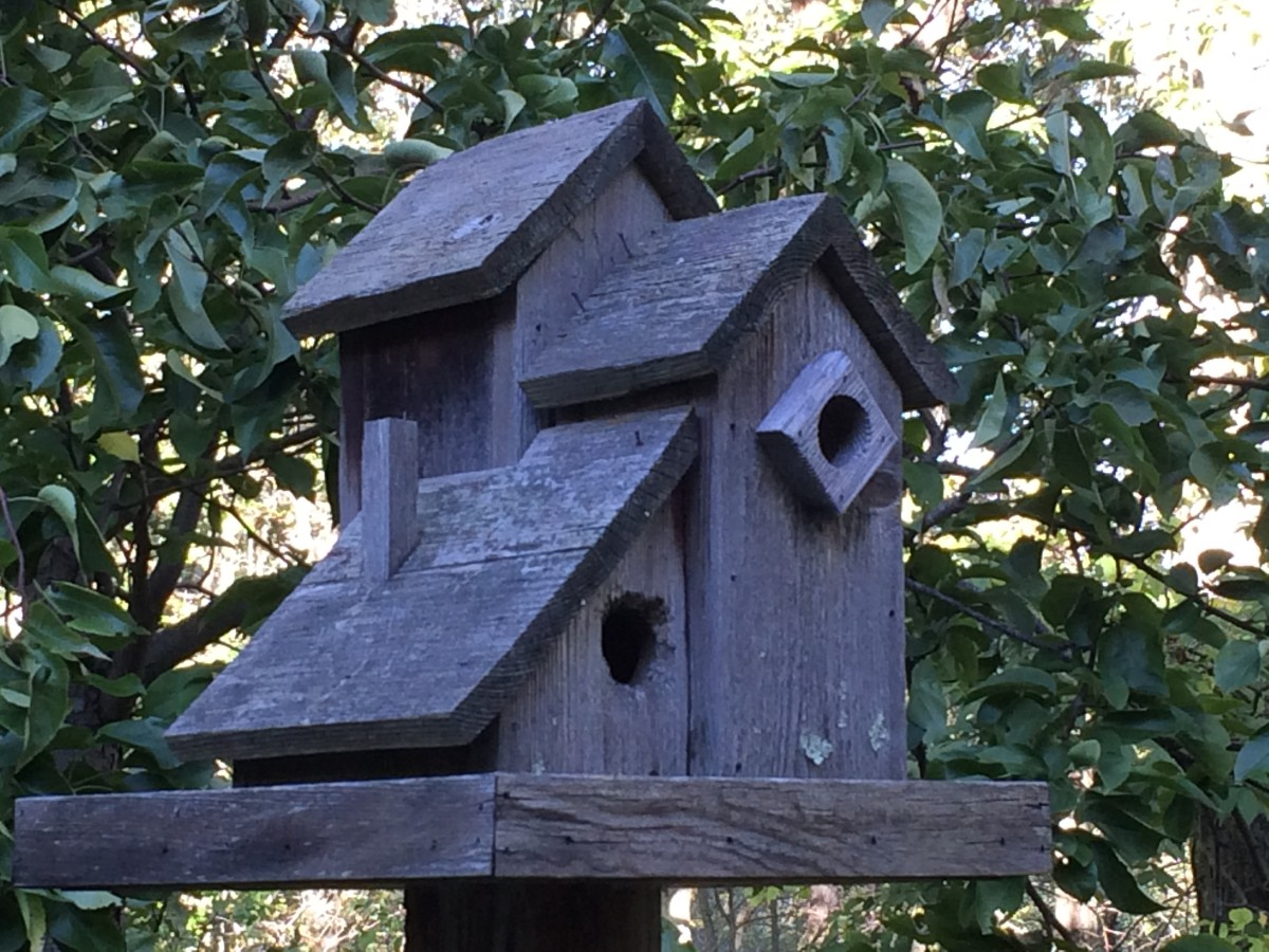 Weathered & aged multi-family birdhouse condo