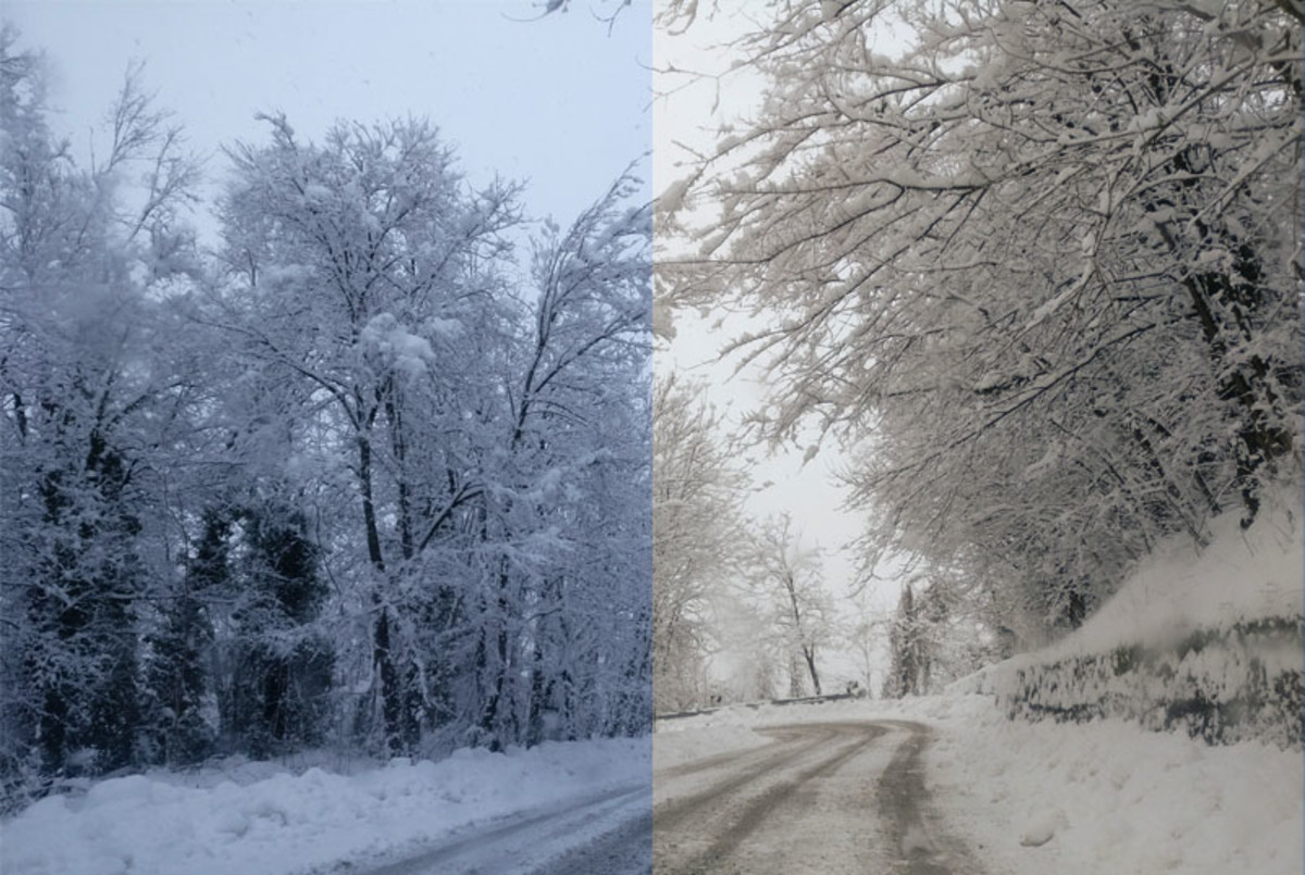 In this picture I had set a wrong white balance and the image came out really cold (left), but then I fixed it via software (right)