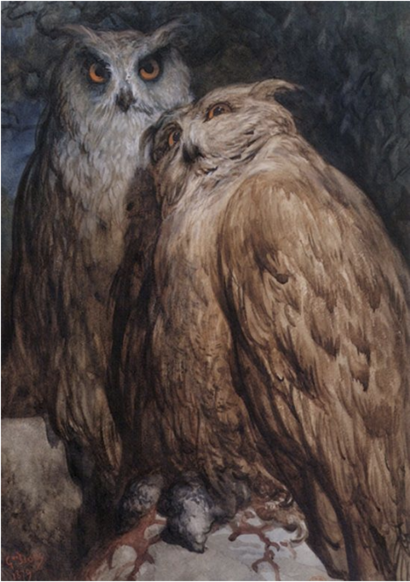 """Two Owls"" by Gustave Doré (1870)"