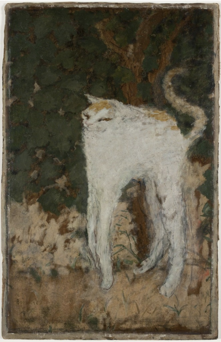 """Le chat blanc"" by Pierre Bonnard (1894)"