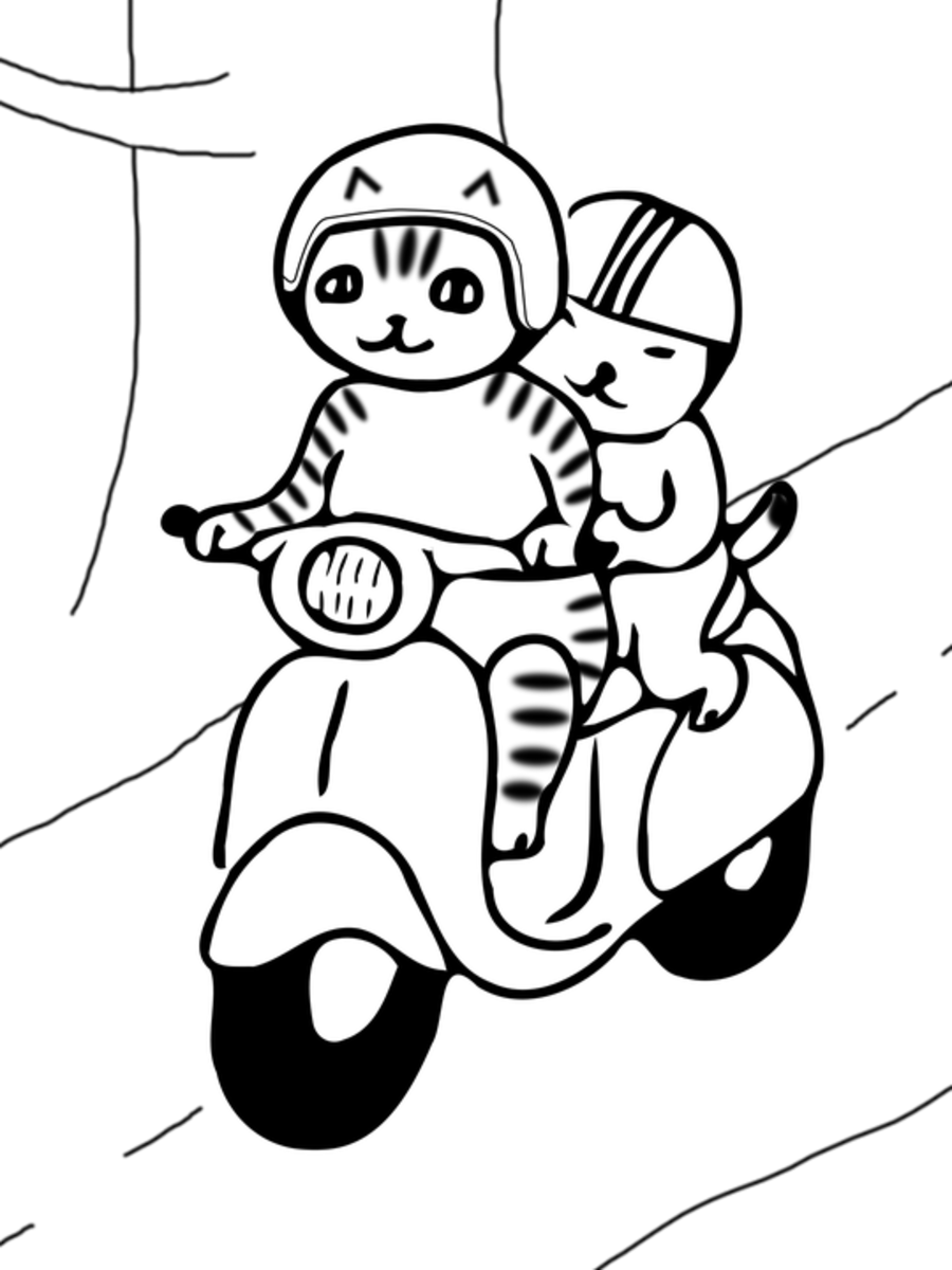 Where could these cute kitties be going on their scooter?