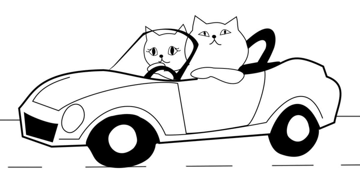 Have you ever seen a cat driving a car before. I wonder where they are heading?